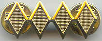 SFMC Brigadier Rank pin small (each)