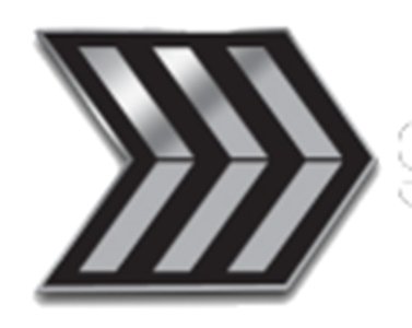 SFMC Enlisted Triple Chevron Rank Pin